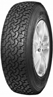 Summer Tyre EVENT ML698 PLUS 205/70R15 96 H