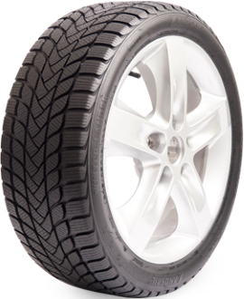 Winter Tyre LANDSAIL WIN LANDER 215/65R16 98 H